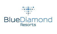 logo blue diamond